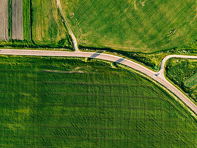 Aerial view of road amidst lush agricultural field during sunny day - p1166m2025358 by Cavan Images
