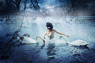 Woman and two swans in a lake - p1270m1114302 by Julie de Waroquier