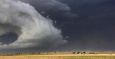 p429m943183f von Jason Persoff Stormdoctor