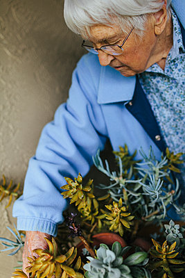 Older mixed race woman caring for potted plants - p555m1408711 by Shestock