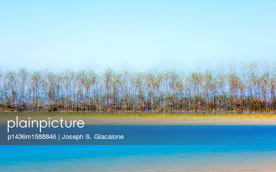 Beach with palm trees - p1436m1588846 by Joseph S. Giacalone