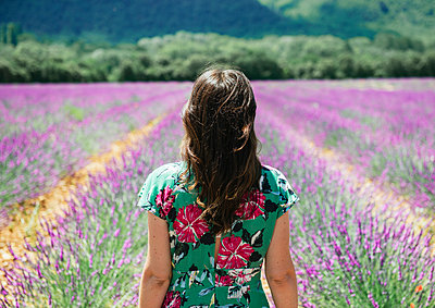 France, Provence, Valensole plateau, woman in lavender fields in the summer - p300m2012551 by Gemma Ferrando