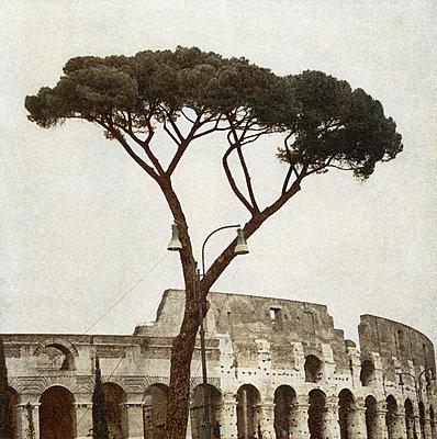Colosseum. - p5280637 by Chia N-Lofqvist