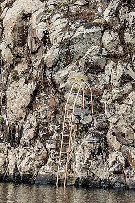 Ladder - p631m913045 by Franck Beloncle