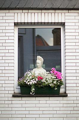 Balcony plant - p5860653 by Kniel Synnatzschke