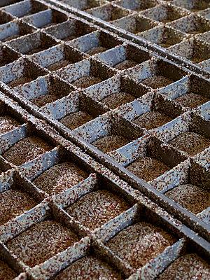 Vollwertbrot mit Körnern in Backstube - p897m1183580 von MICK