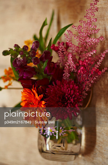Assorted cut Autumn flowers. - p349m2167849 by Sussie Bell