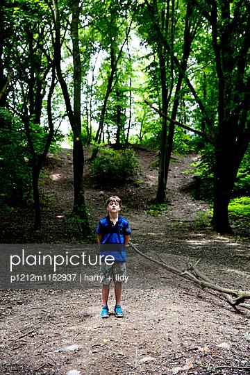 Junge auf der Lichtung im Wald - p1212m1152937 von harry + lidy