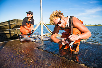 Young man working on the water in aquaculture oyster farm maintenance - p1166m2268896 by Cavan Images