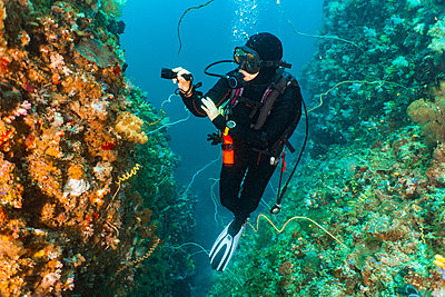 Female scuba diver looking at colourful coral at underwater canyon, Komodo Island, Nusa Tenggara Timur, Indonesia - p429m2075052 by Henn Photography