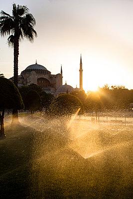 Istanbul - p488m800549 by Bias