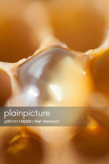 p301m1148269 von Ralf Hiemisch