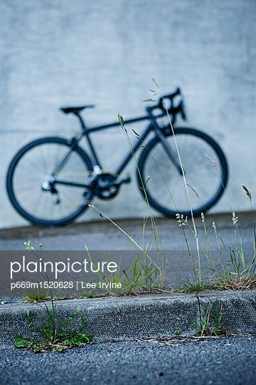 p669m1520628 von Lee Irvine
