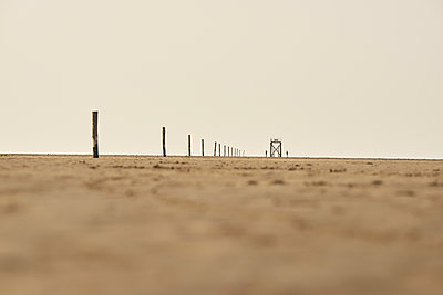 Buhnen bei Ebbe, Wattenmeer, Nordsee - p1696m2296509 von Alexander Schönberg