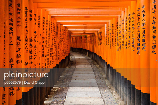 Torii gates at Fushimi Inari Shrine, Kyoto, Japan - p8552579 by David Clapp