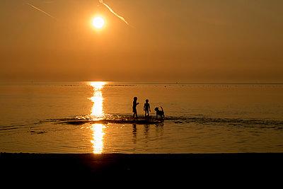 Kinder spielen mit dem Hund im See - p1212m1178664 von harry + lidy