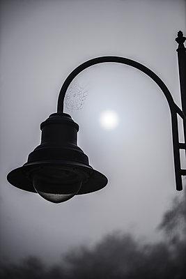 Street lamp at moonlight - p1695m2290975 by Dusica Paripovic