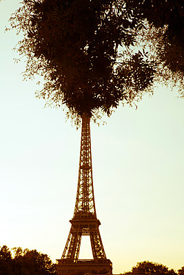 Eiffel Tower - p873m2013958 by Philip Provily