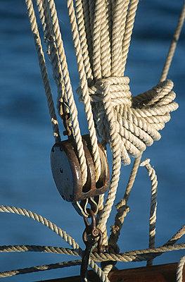 Hemp rope - p1003m781281 by Terje Rakke