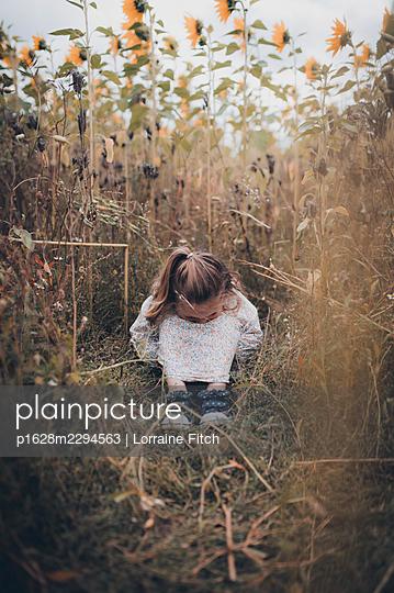 Kleines Mädchen in einem Sonnenblumenfeld - p1628m2294563 von Lorraine Fitch