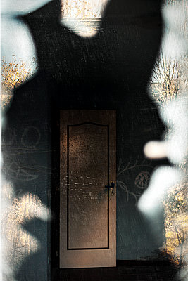 Illusion - p1245m1148702 by Catherine Minala