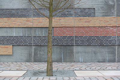 Neuer Lebensraum - p497m903875 von Guntram Walter