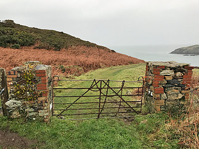 Rusty old gate - p1048m2016709 by Mark Wagner