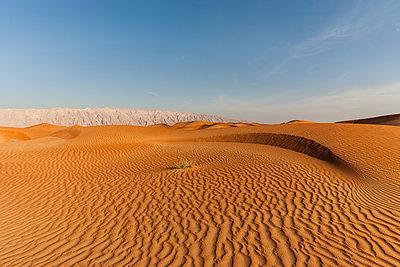 Wüstenlandschaft - p280m1137338 von victor s. brigola