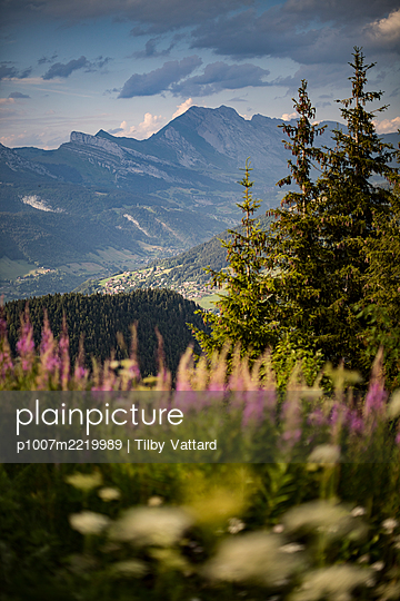 View over meadow onto mountain range - p1007m2219989 by Tilby Vattard