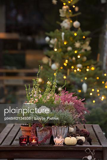 Herbstliche Dekoration auf einem Holztisch auf der Terrasse. - p948m2134938 von Sibylle Pietrek