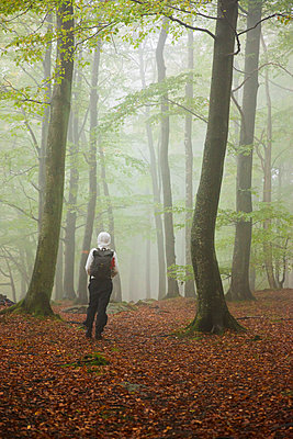 Sweden, Skane, Soderasen, Rear view of woman in foggy forest - p352m1349406 by Gustaf Emanuelsson