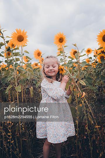 Little girl in sunflower field - p1628m2294555 by Lorraine Fitch
