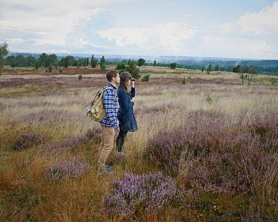 Trip in heath - p1124m931794 by Willing-Holtz