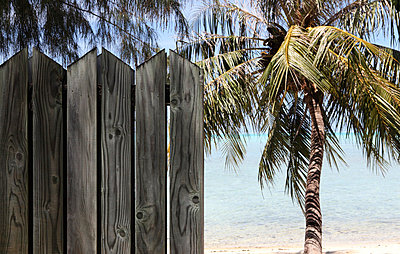 Wooden fence - p045m658461 by Jasmin Sander