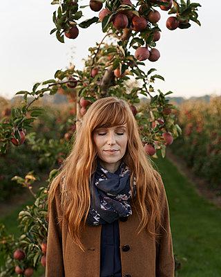 Frau steht vor Apfelbaum - p1124m1069637 von Willing-Holtz