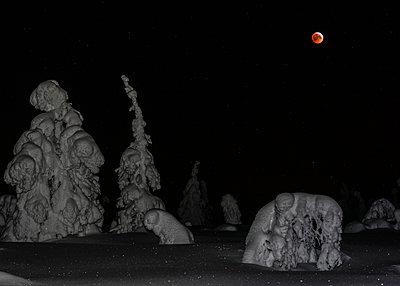 Winterly andscape - p1241m2100364 by Topi Ylä-Mononen