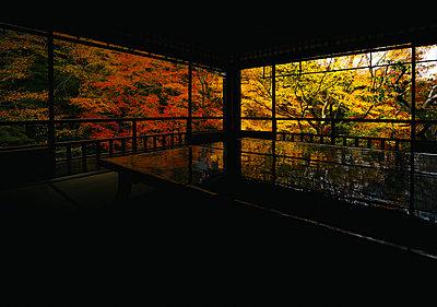 Aussicht auf Herbslaub von einem japanischen Tempel - p1180m1208156 von chillagano