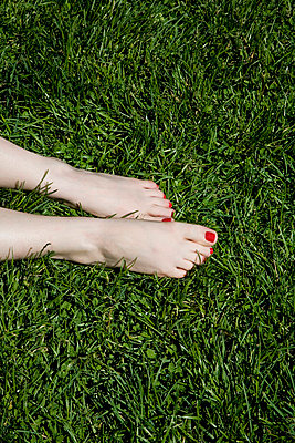 A young woman's bare feet with red painted toenails lying on grass - p3017799f by Jane