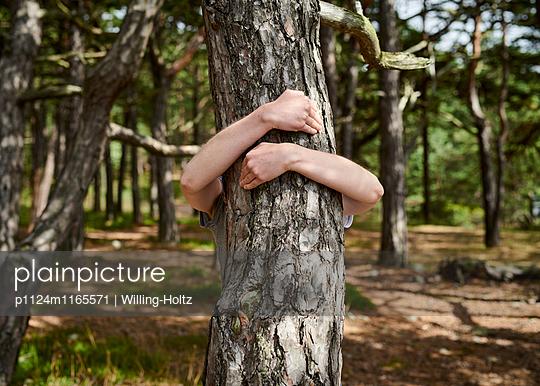 Frau umarmt Baum - p1124m1165571 von Willing-Holtz