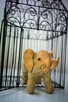 Elephant breaking out of cage - p1170m1044354 by Bjanka Kadic