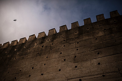 Bird passing a wall of the fortress - p1007m2092421 by Tilby Vattard