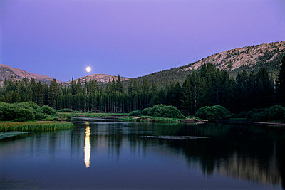 Landscape, Full Moon rising in Tuolumne Meadows, Yosemite. - p3431712 by Jerry Dodrill