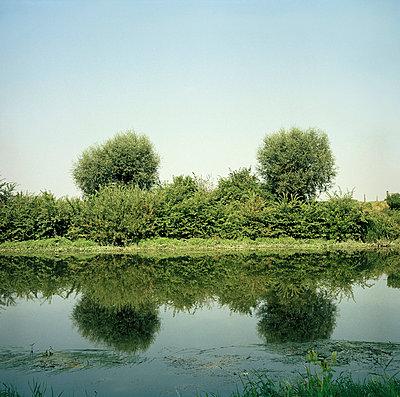 River bank - p56710129 by daniel belet