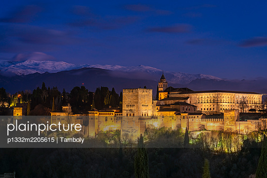 View of the Alhambra Palace with Sierra Nevada in the background, - p1332m2205615 by Tamboly