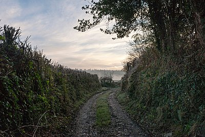Dirt track, Gunislake, Cornwall, England - p429m1021684f by Colin Hawkins