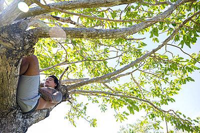 Man relaxing on tree, Pagudpud, Ilocos Norte, Philippines - p429m2091401 by dotdotred