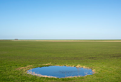 Puddle on a field - p1132m2168069 by Mischa Keijser