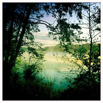 Ufer am Großensee - p979m1146585 von Werner Gritzbach