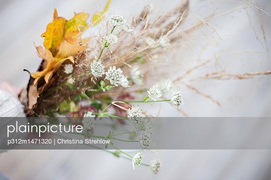 p312m1471320 von Christina Strehlow
