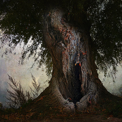 An Eerie Silence - p1633m2211100 by Bernd Webler